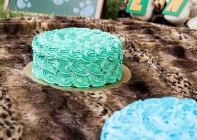 Smash the cake tema safari